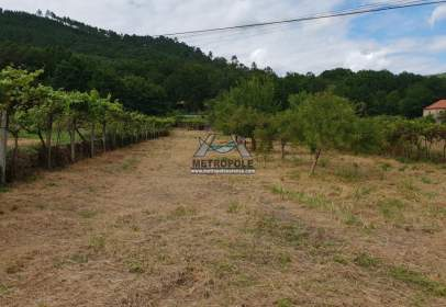 Rural Property in Coles