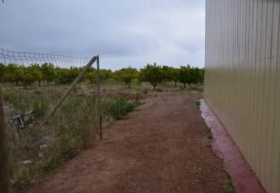Terreny a Avinguda Valencia, 125