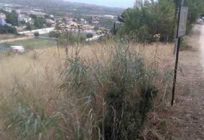 Land in calle Lloma Molina