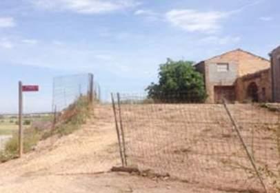 Terreny a Carretera Guissona