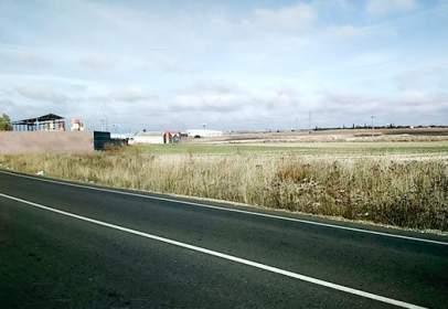 Land in calle Cmno.De Cabrerizos Pc.151 Pg.4 Sect.I5-Ur