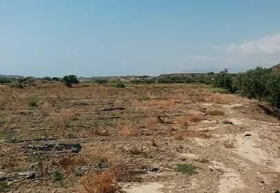 Terreno en calle Alifraga