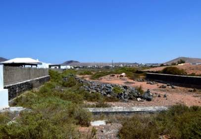 Terreno en La Oliva