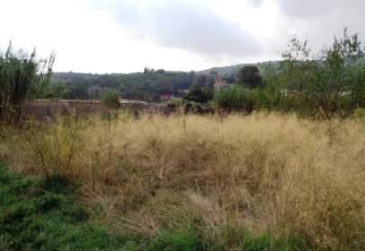Terreny a Passatge del Congost, 79