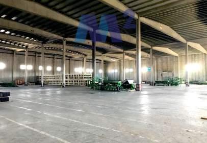 Industrial building in Torrejón del Rey