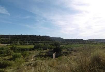 Rural Property in Partida Salobras