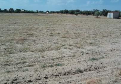 Terreno en Carretera de Villanueva de la Serena, nº SN