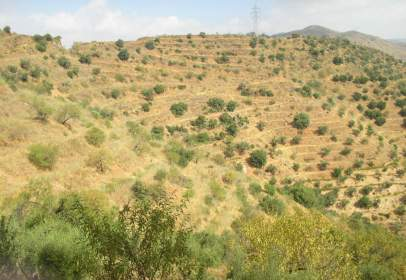 Terreno en Carretera Almojia