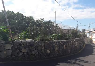 Rural Property in Carretera de Icod