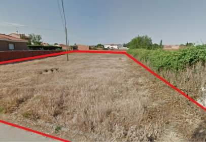 Land in calle Ventorro, Par. 5007