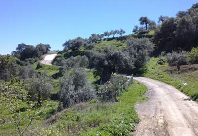 Terreno en Camino Chiribenitez, nº 50