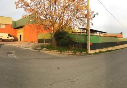 Industrial Warehouse in Poligon La Raconada
