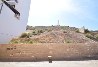 Land in El Faro
