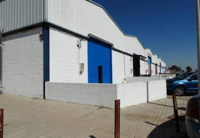 Industrial Warehouse in Poligono Fortiz