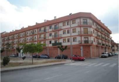 Promoción de tipologias Vivienda en venta ARCHENA Murcia