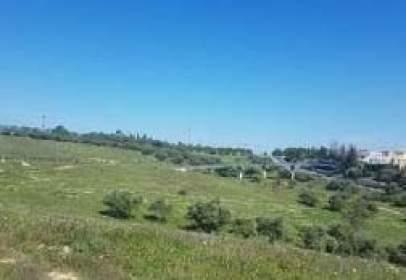 Rural Property in Paraje de Hacienda de Guzmán.,  Sn