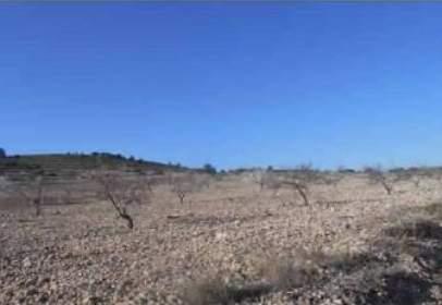Promoción de tipologias Terreno en venta CAUDETE Albacete