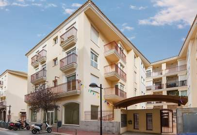 Promoción de tipologias Vivienda Garaje en venta VERGER, EL Alicante