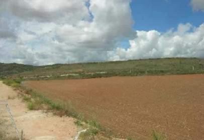 Terreno en  Sector 4.1 Cerro de La Horca,  1