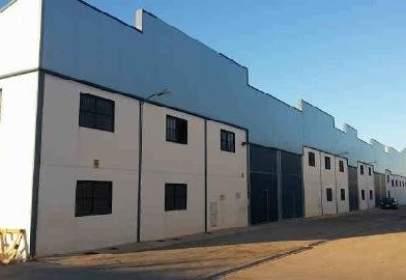 Promoción de tipologias Nave en venta CHINCHILLA DE MONTE ARAGON Albacete