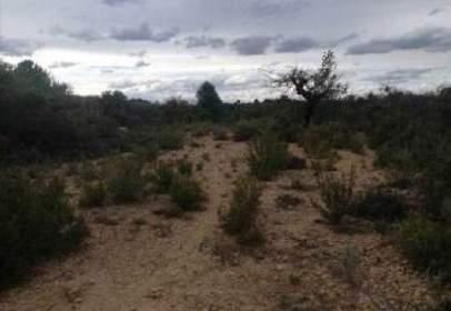 Rural Property in Partida La Loma,  Polig 28