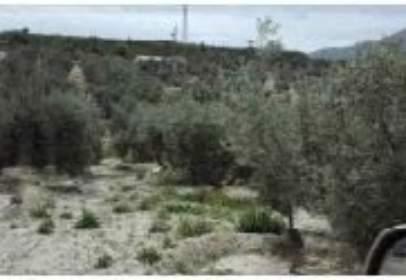 Promoción de tipologias Terreno en venta PEGALAJAR Jaén
