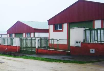 Nave industrial en calle Centro del Prado, Polígono Charca del Hambre, Parc