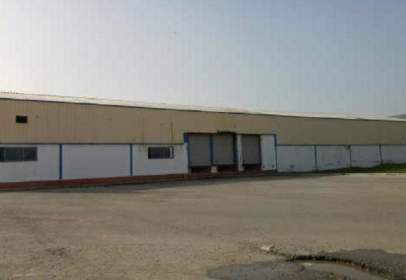 Industrial Warehouse in Camino de Jabalquinto,  9